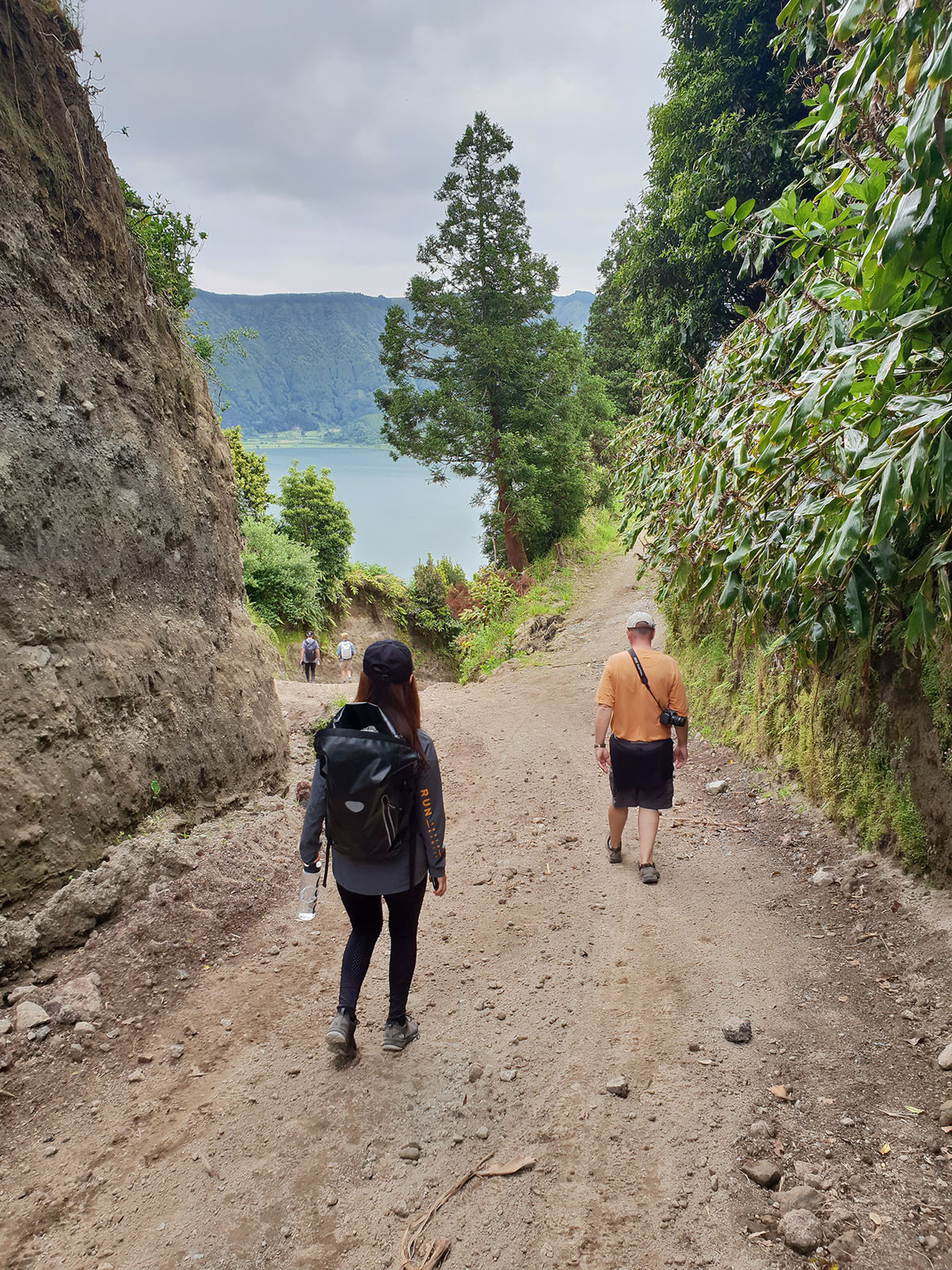 Azores: Walk and Work with Wood
